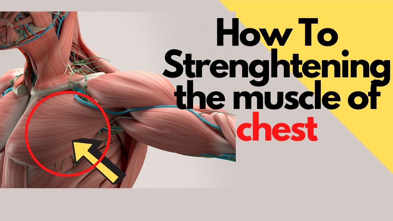 How to Strenghtening the muscle of chest