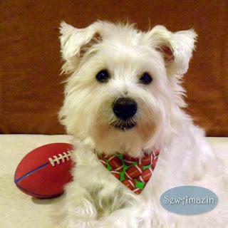 Flea Flicker Football Dog Bandana, over the collar