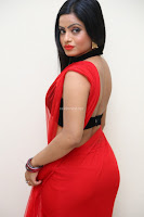 Aasma Syed in Red Saree Sleeveless Black Choli Spicy Pics ~  Exclusive Celebrities Galleries 066.jpg