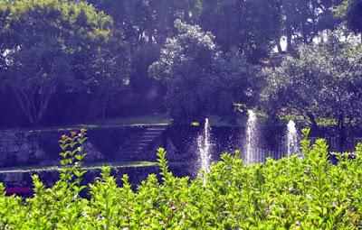 Chafariz e plantas do Parque de São Roque