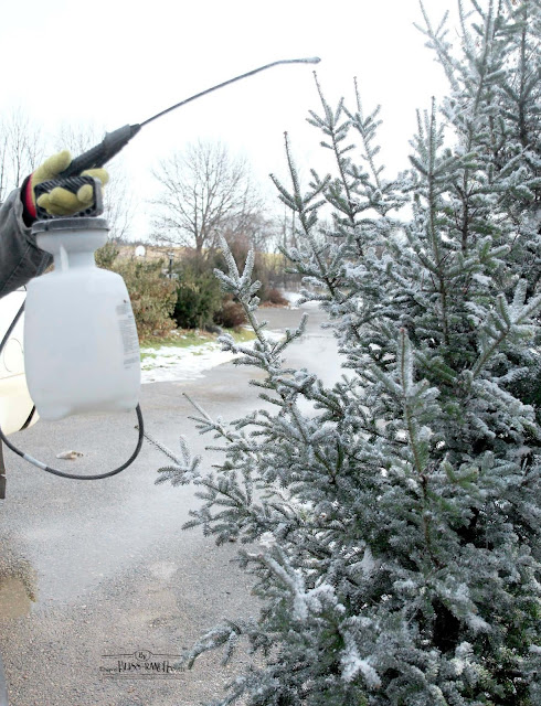 How to Flock Your Christmas Tree DIY Bliss-Ranch.com