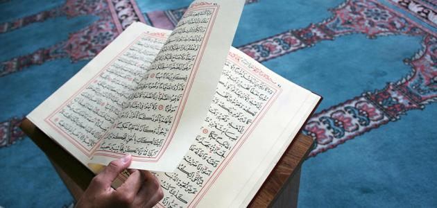How many parties of the Noble Qur'an?