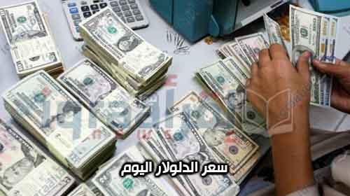 سعر الدولار اليوم 13-8 : ارتفاع سعر الدولار اليوم فى السوق السوداء 5 قروش