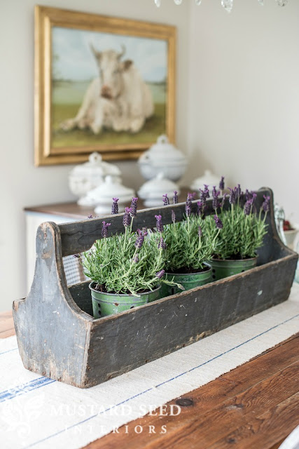 miss mustard seed tool box with lavender