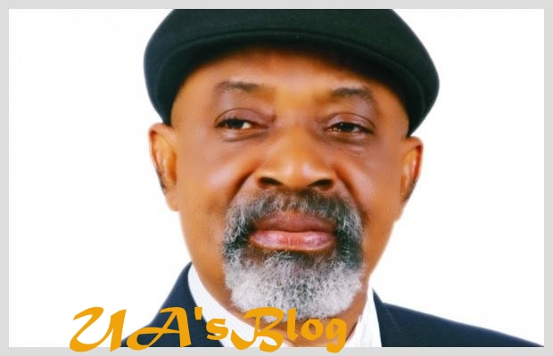 2023: Ohanaeze Berates Chris Ngige For Asking Igbo To Join APC