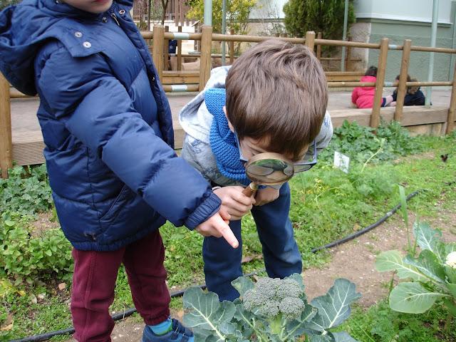 """Ναύπλιο: """"Η φύση στο σχολείο!"""" Εργαστήριο για εκπαιδευτικούς στους κήπους του Φουγάρου"""