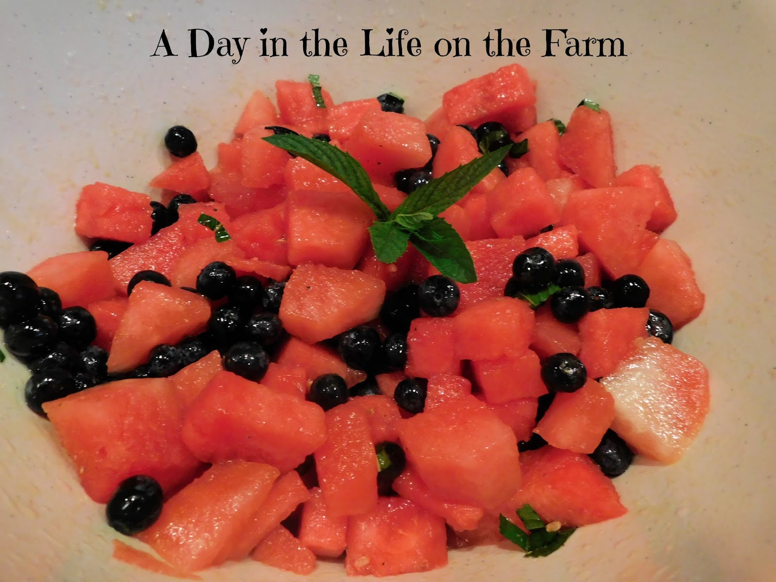 Watermelon, Blueberry and Mint Salad