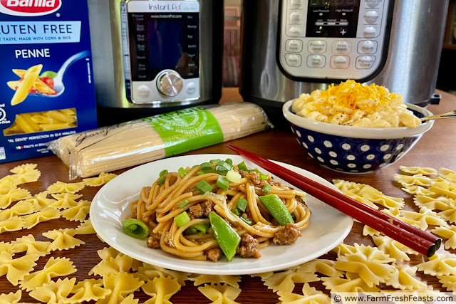 Image of instant pots, different shapes of dried pasta, a plate of Instant Pot Dan Dan Noodles and a bowl of mac & cheese