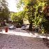 Ένα μαγευτικό ταξίδι ....από την Αρίστη και το Πάπιγκο ...ως το Μέτσοβο [βίντεο]