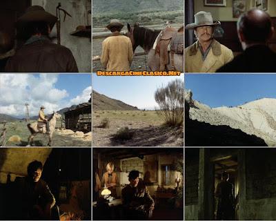Capturas: Caballos salvajes (Chino) (1973)