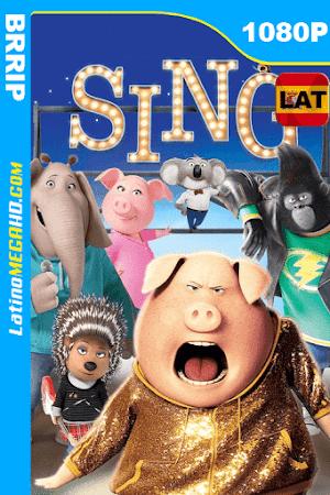 Sing: ¡Ven y canta! (2016) Latino HD BRRIP 1080P ()