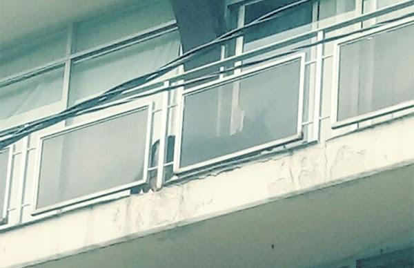 Un perro es rescatado en la CdMx; lo bajaron por un balcón y atado de una cuerda (VIDEO)