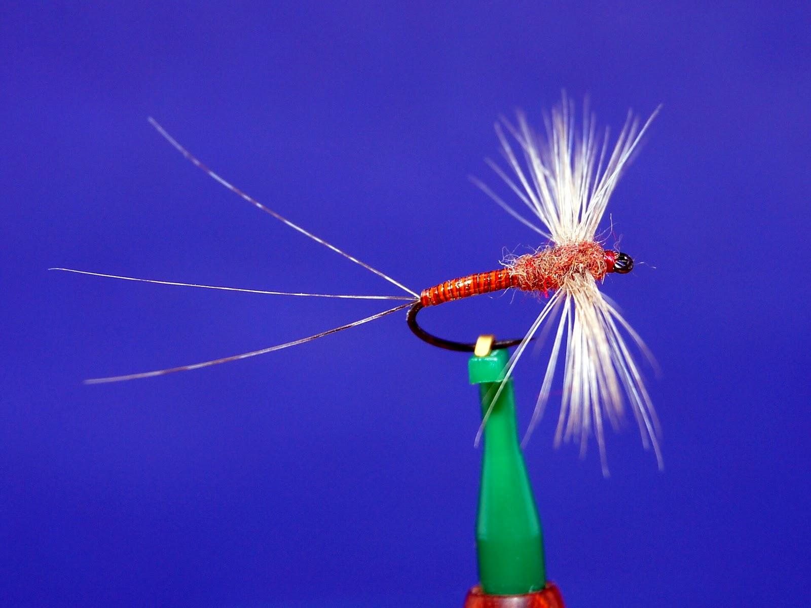 The Rusty Spinner: Favorite Flies Volume Three: Brill's Bugs