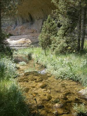 El río Tejadillos a su paso por su Hoz (Cuenca)