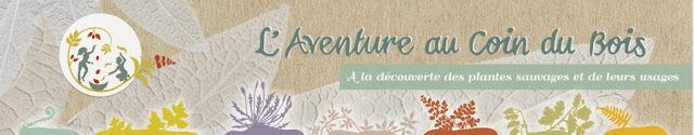http://www.laventureaucoindubois.org/