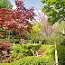 Holland Park & Roof Gardens (London - England)