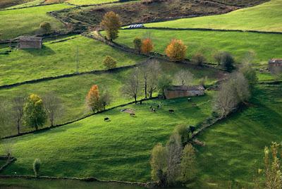 De los Valles Pasiegos a las costa: Cantabria Infinita