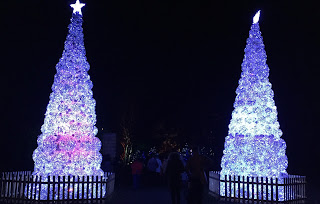 Pic of white lit Christmas trees on either side at the entrance to the trail