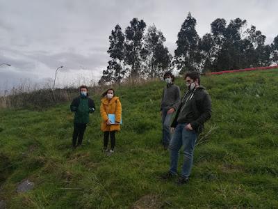 Voluntarios no Monte da Fraga tras a eliminación da herba da Pampa