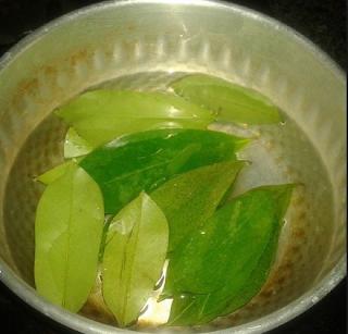 Obat asam urat alami dari tumbuhan