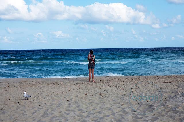 femme de dos en train de prendre la mer en photo à côté d'une mouette sur la plage de ses Illetes à Formentera