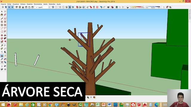 Estudo da Forma - Árvore Seca