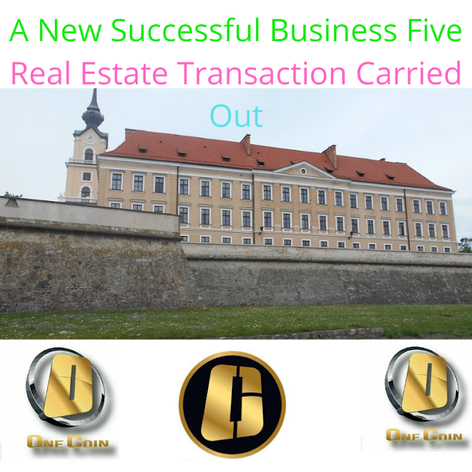 A New Successful Business: Five Real Estate Transactions Carried Out 100% With OneCoin