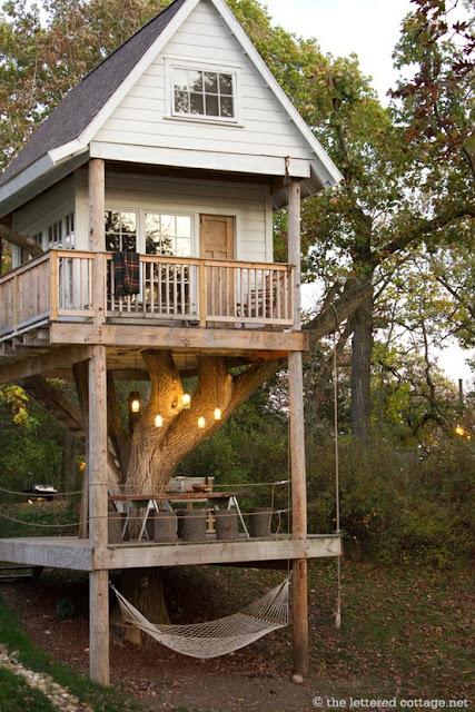 dom na drzewie