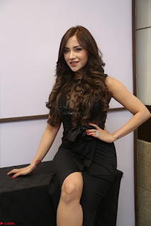 Angela Krislinzki in Transparent Black Gown at Rogue Movie Teaser Launch 1st March 2017 078.JPG