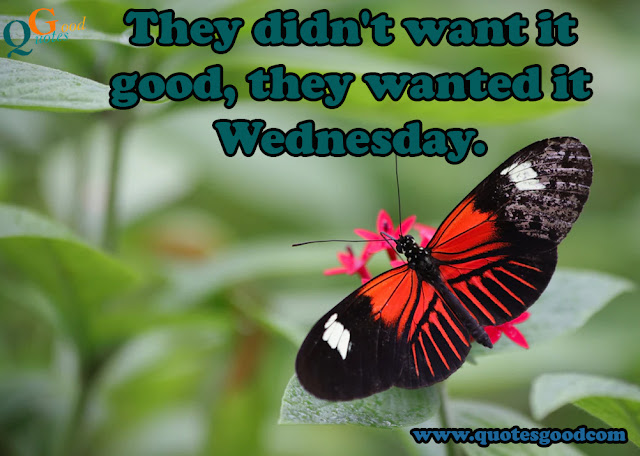 Wednesday-quotes