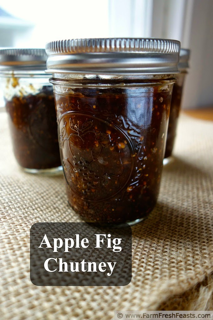 Apple fig chutney is a tangy condiment made from fresh apples, fresh figs, and savory spices. This cooks easily on the stove and can be water bath processed for shelf stability.