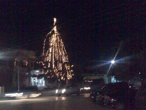 ΔΗΜΟΣ ΔΕΛΤΑ <p> Ανάβουν τα λαμπιόνια των Χριστουγεννιάτικων δένδρων και συγκεντρώνουν φάρμακα