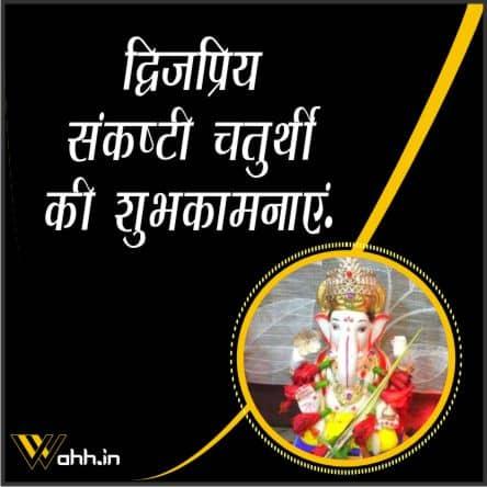 Dwijapriya Sankashti Chaturthi Wishes