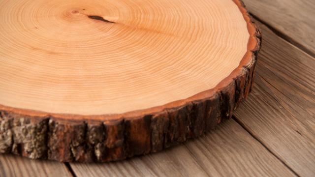 Ide kreatif dari irisan kayu
