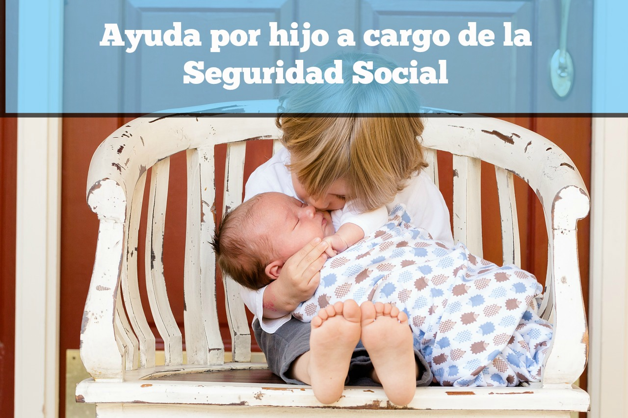 Ayuda por hijo a cargo de la Seguridad Social