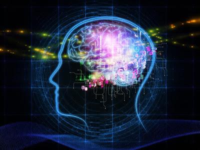 Progetto Genoma Umano: come funziona il cervello umano