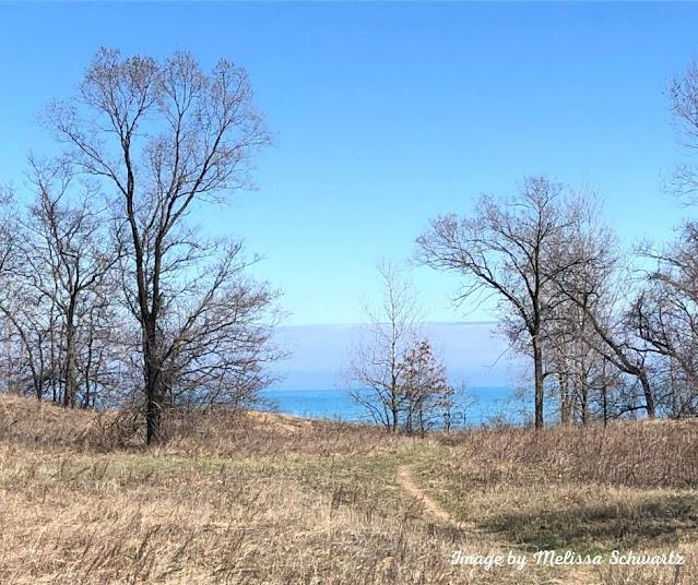 Lake Michigan peeking from behind the dunes.