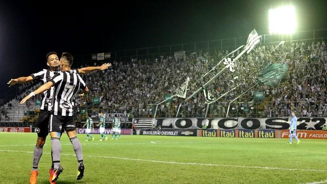 Fogão vence o Palmeiras e deixa a zona de rebaixamento