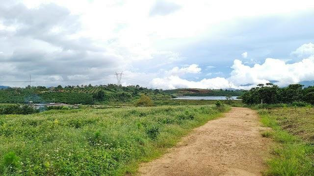 Bán 4200m2 đất view hồ Mai Thành - phường Lộc Tiến - Bảo Lộc.