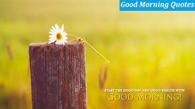 good-morning-wallpapers-hd-pictures