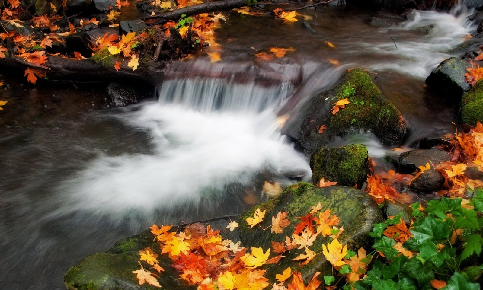 Hd Wallpapers 1080p Nature: AMAZING NATURE HD WALLPAPERS 1080p