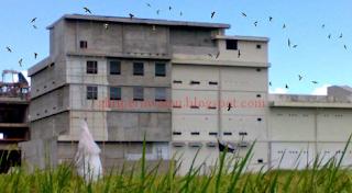 Penentuan Lokasi Gedung Sarang Walet Buatan
