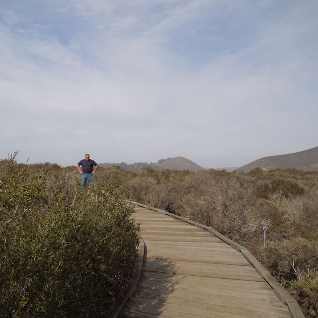 The Elfin Forest in Los Osos, California: A Review in Photos: Hubby on Boardwalk
