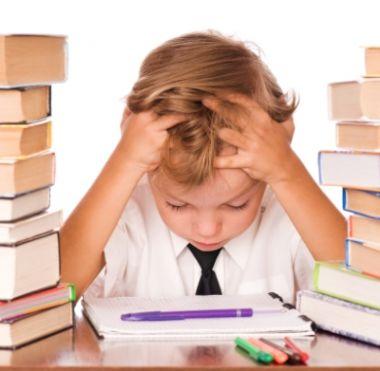 öğrenci eğitimi