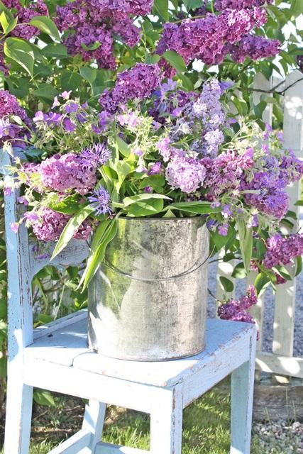 blomster fra april til juni