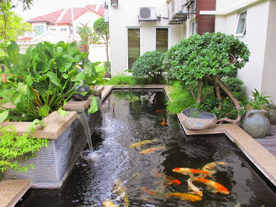Desain Kolam Ikan Cantik Di Halaman