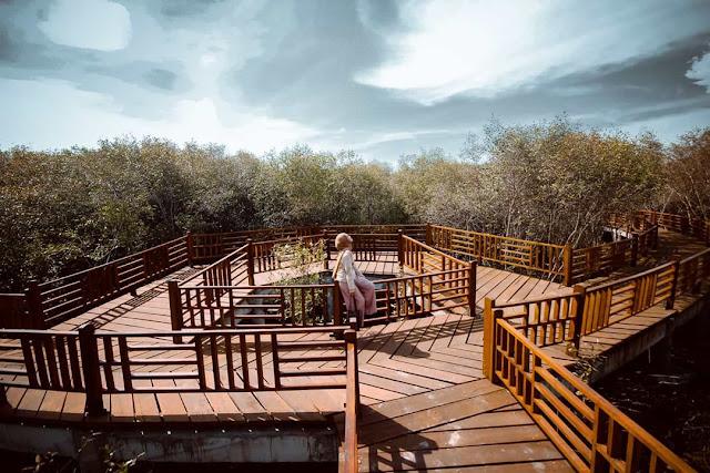 Wisata Mangrove Gunung Anyar Surabaya