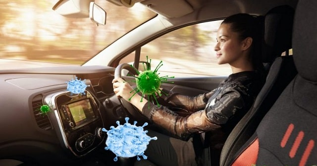 bacteria in our cars germs vehicle