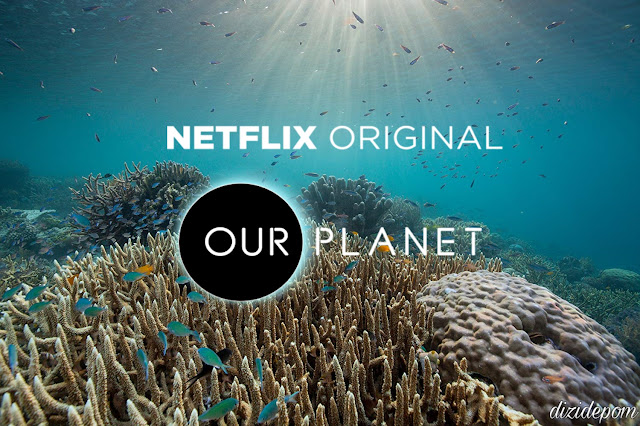 Our Planet Dizisi İndir