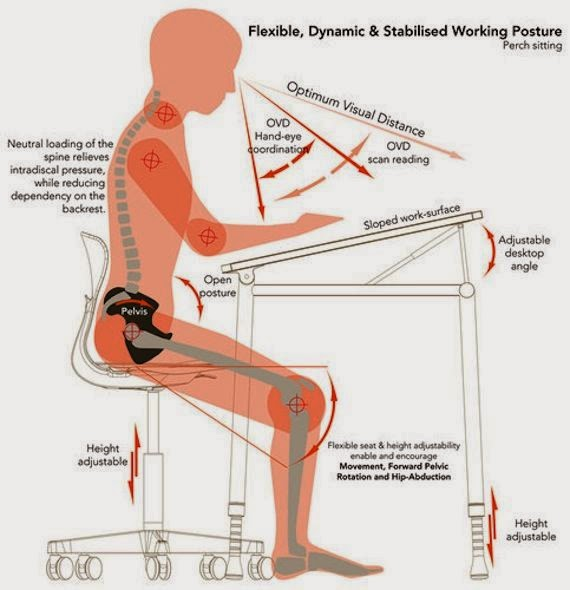 Nice Ergonomic Chairs For Back Pain   Choosing The Best Ergonomic Office Chair